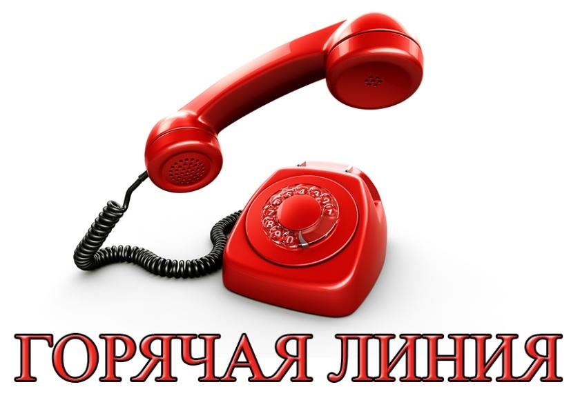 winline номер горячей линии телефона